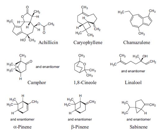 Struktur kimia senyawa yang terkandung pada daun seribu