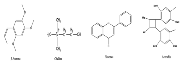 Struktur Kimia Dlingu - Acorus Calamus - tanaman obat taman husada