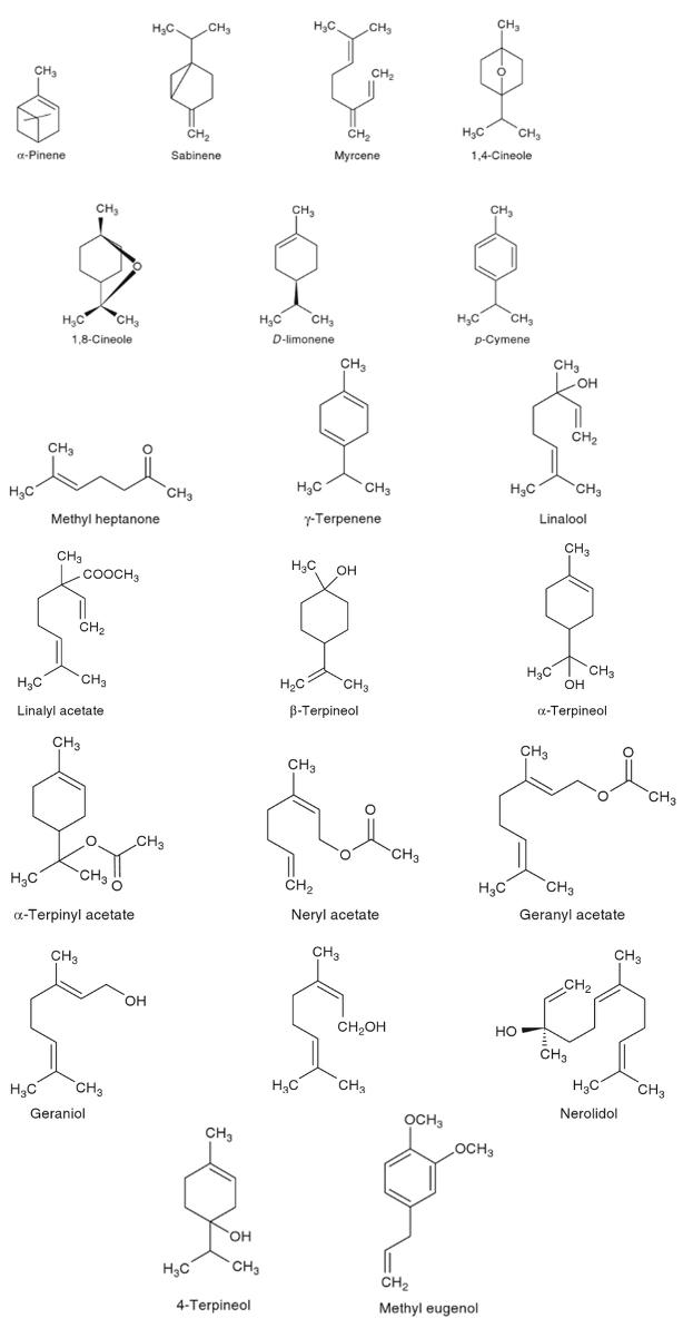 Struktur kimia senyawa yang terkandung pada kapulaga - tanaman obat taman husada